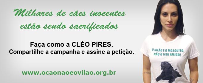 banner_cleo