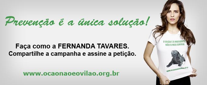 banner_fernanda